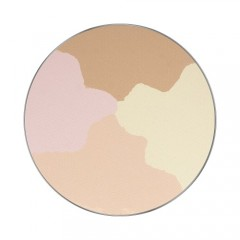 Pūderis FREEDOM SYSTEM PRESSED POWDER 24